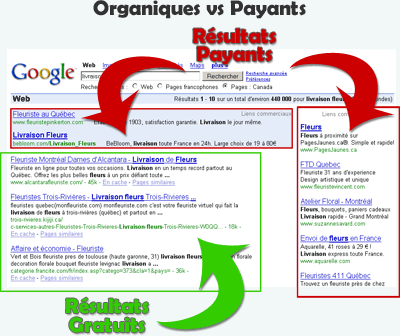referencement organique vs payant